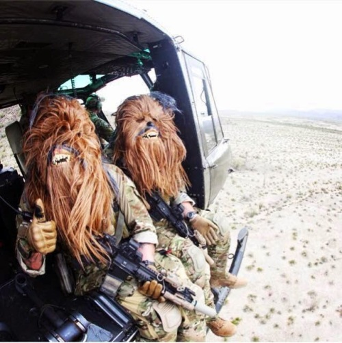 Flight of  The Wookies