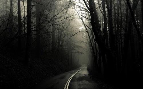 fi-dark-road
